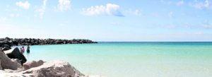 Visit Shell Island in Panama City Beach