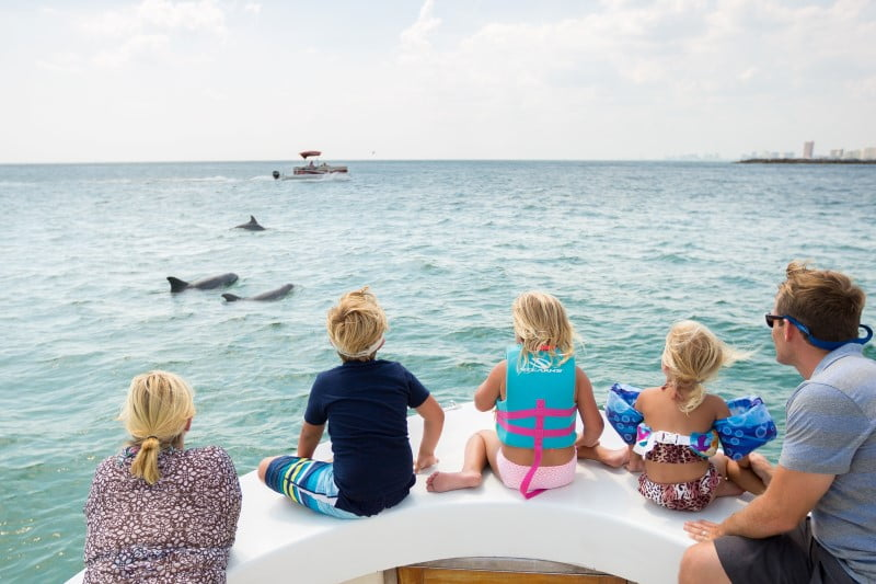 The best animal adventures in Panama City Beach